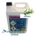Essenza concentrata fragranza eucalipto lt. 5