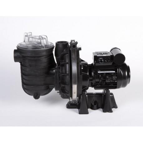 Pompa Piscina STA-RITE 5P2R Duraglas 3/4 HP - 12 m3/h