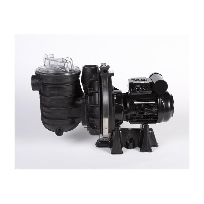 Pompa per piscina STA-RITE 5P2R Duraglas 1,0 HP - 15 m3/h