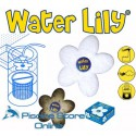 recensisci: WATER LILY ASSORBENTE SPECIFICO RESIDUI GRASSI